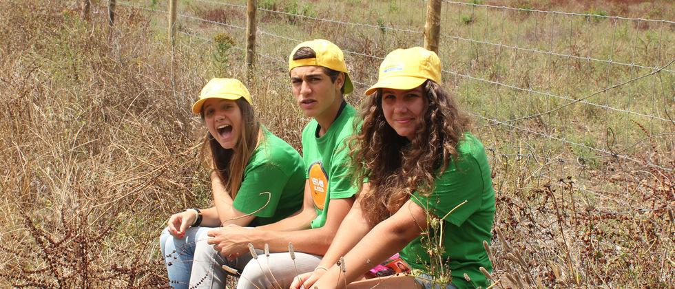 Verão na ULisboa 2014