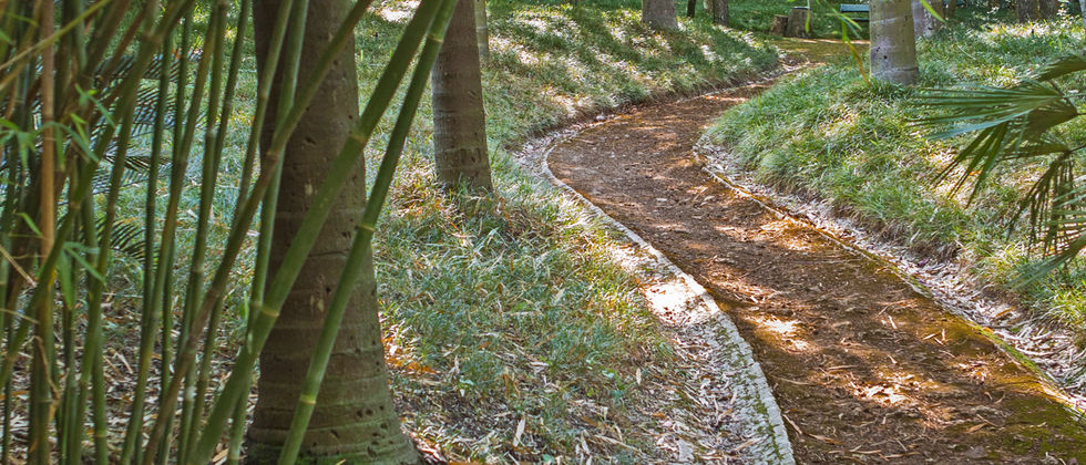 Projeto 121 - Proteger, Valorizar e Promover o Jardim Botânico de Lisboa