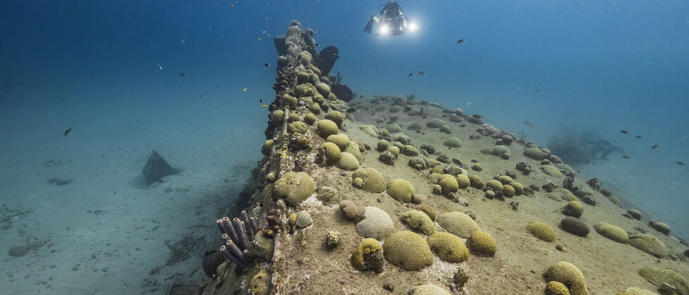 Ulisses Unite! ULisboa ocean explorer