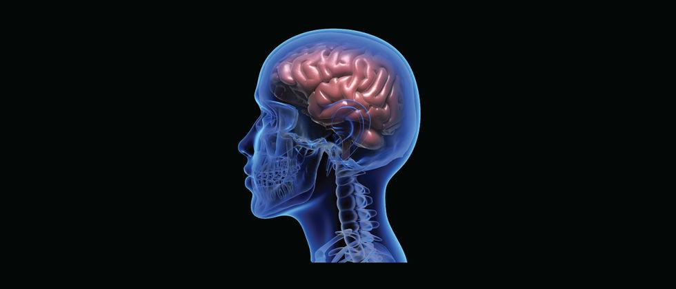 Limitless? Imaginários, consumos e desafios no aprimoramento cognitivo