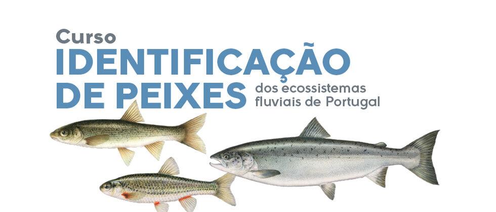 """9.ª Edição do curso   """"Identificação de Peixes dos Ecossistemas Fluviais de Portugal"""