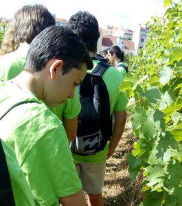 Dia Aberto do Instituto Superior de Agronomia