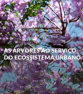 """Lx-Tree - Conferência """"As árvores ao serviço do ecossistema urbano"""""""