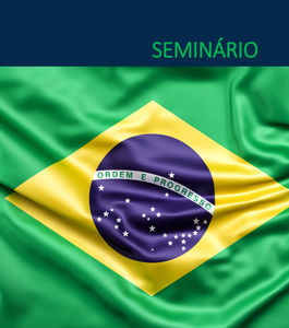 Seminário | Corrupção e a Administração Pública no Brasil: Retrospectiva e Perspetivas do Novo Governo
