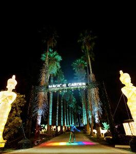 Jardim Tropical da Universidade de Lisboa ilumina-se para uma volta ao mundo sensorial e interativa