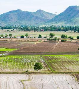 """Lançamento do """"Guia de Boas Práticas Agrícolas para a redução das Emissões de Amoníaco"""","""