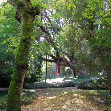 jardins ULisboa
