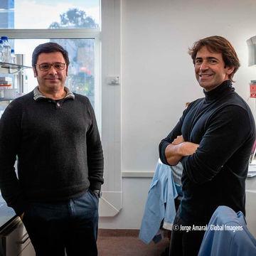 Cientista português eleito membro da Organização Europeia de Biologia Molecular